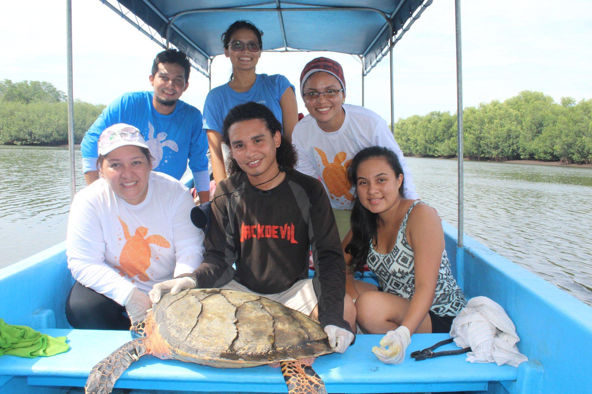 TortugasNicas.org